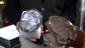 Dusting for Prints from a Fossil Fish to Understand EvolutionaryChange