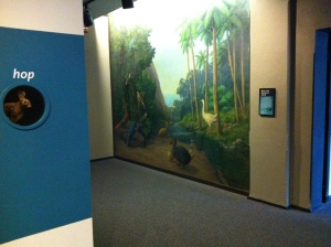 """The """"Dodo Nook"""" near the Outside In exhibit might also work as a quiet space sometimes, Academy staffers noted. But sometimes it is crowded with school groups lining up to use the bathroom."""