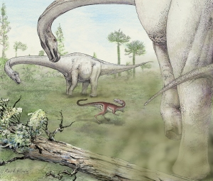 Artist's rendering of Dreadnoughtus in life. Credit: Mark A Klingler, Carnegie Museum of Natural History