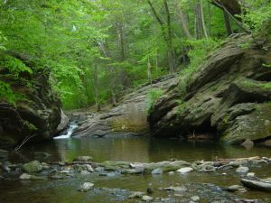 Cresheim Creek in Fairmount Park