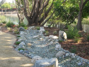 Drought-resistent lawns are just a small part of Californians' effort to minimize water use.