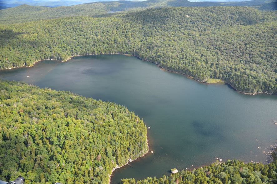 An aerial view of Brooktrout Lake. Photo credit: Dave Winkler, DFWI RPI 2015.