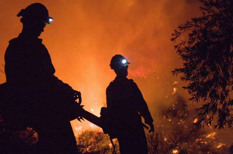 A pair of firefighters in a burning forest