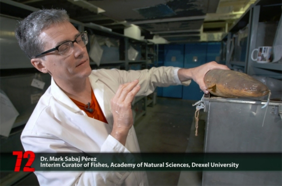 Mark Sabaj with his title chyron for the Netflix show, handling an electric eel specimen
