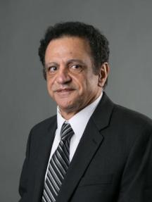 Professor Shawkat Hammoudeh